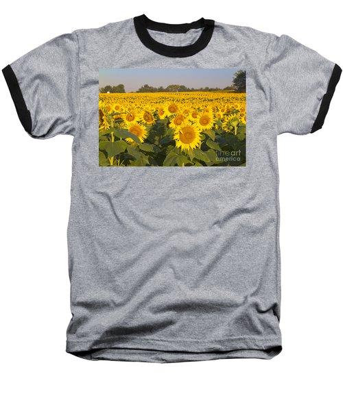 Sunshine Flower Field Baseball T-Shirt