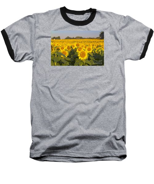 Sunshine Flower Field Baseball T-Shirt