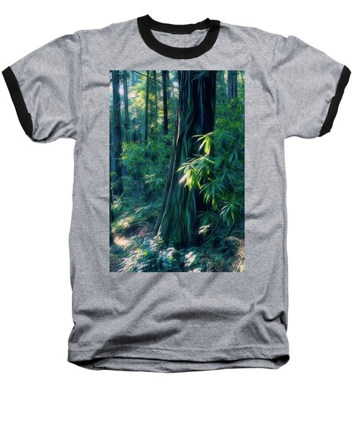 Sunshine In The Forest Baseball T-Shirt