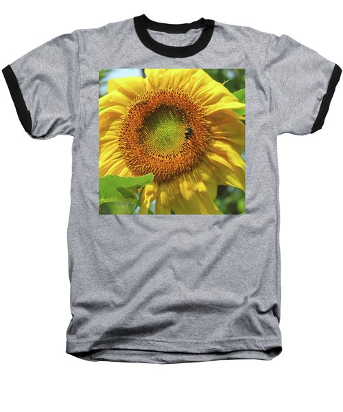 Sunshine In The Garden 1 Baseball T-Shirt by Brooks Garten Hauschild