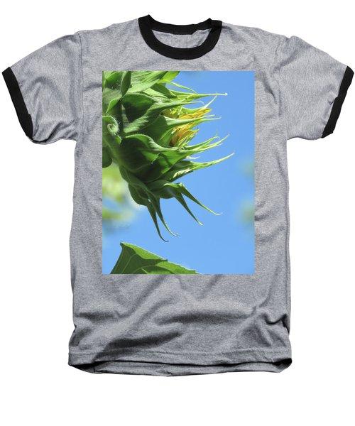 Sunshine In The Garden 15 Baseball T-Shirt