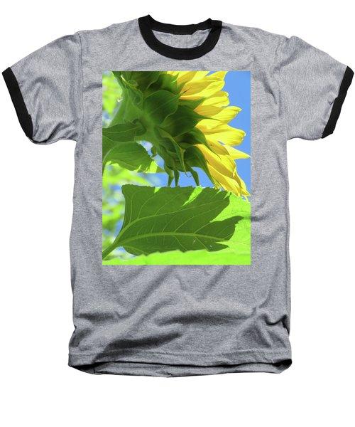 Sunshine In The Garden 19  Baseball T-Shirt by Brooks Garten Hauschild