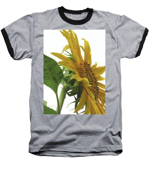 Sunshine In The Garden 25 Baseball T-Shirt by Brooks Garten Hauschild