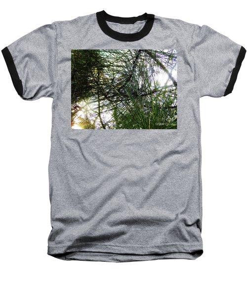 Sunshine Through Pine Needles Baseball T-Shirt