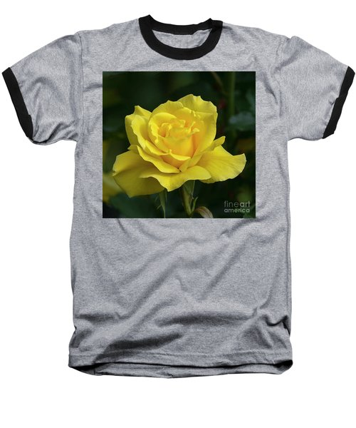 Sunsprite Rose 2 Baseball T-Shirt