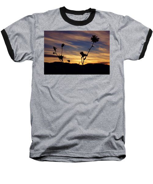 Superbloom Sunset In Death Valley 100 Baseball T-Shirt