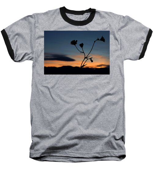 Superbloom Sunset In Death Valley 105 Baseball T-Shirt