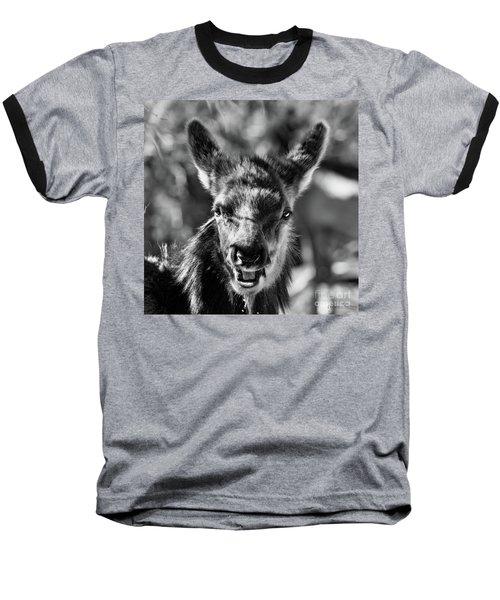Surprise, Black And White Baseball T-Shirt