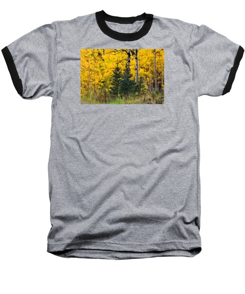 Surrounded By Gold Baseball T-Shirt by Diane Alexander