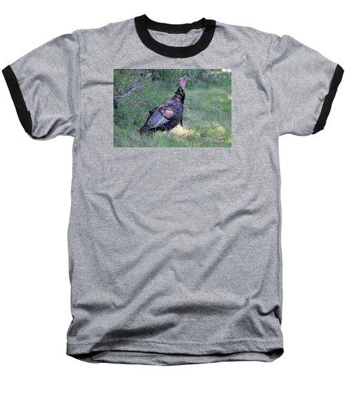 Surveying The Area Baseball T-Shirt