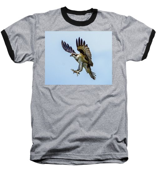 Suspended Osprey Baseball T-Shirt by Jerry Cahill