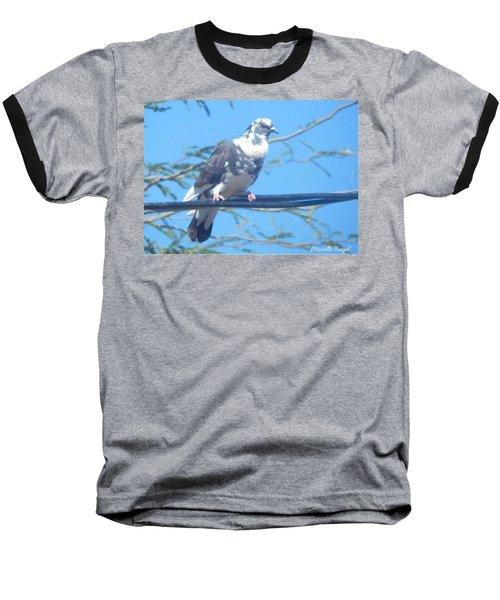 Suspicious Bird Baseball T-Shirt