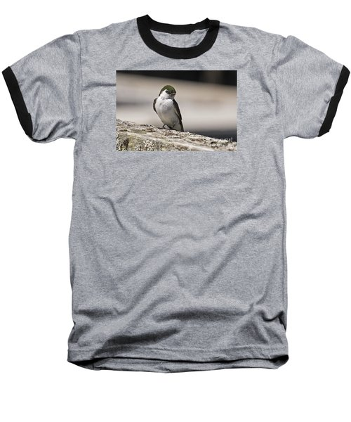 Baseball T-Shirt featuring the photograph Swallow by Inge Riis McDonald