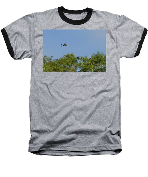 Swallow-tailed Kite Flyover Baseball T-Shirt by Paul Rebmann