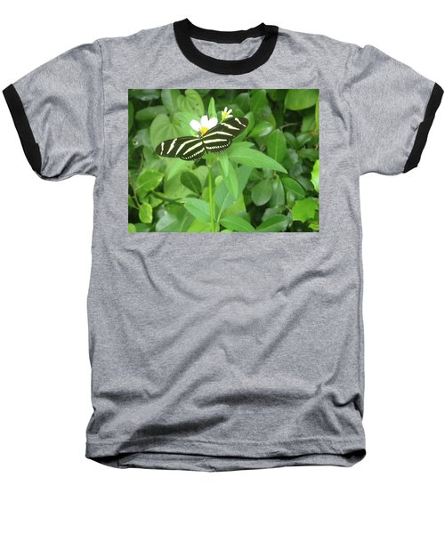 Swallowtail Butterfly On Leaf Baseball T-Shirt