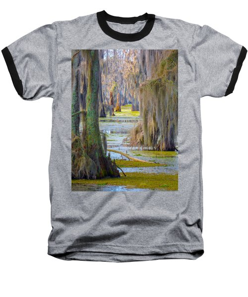 Swamp Curtains In February Baseball T-Shirt