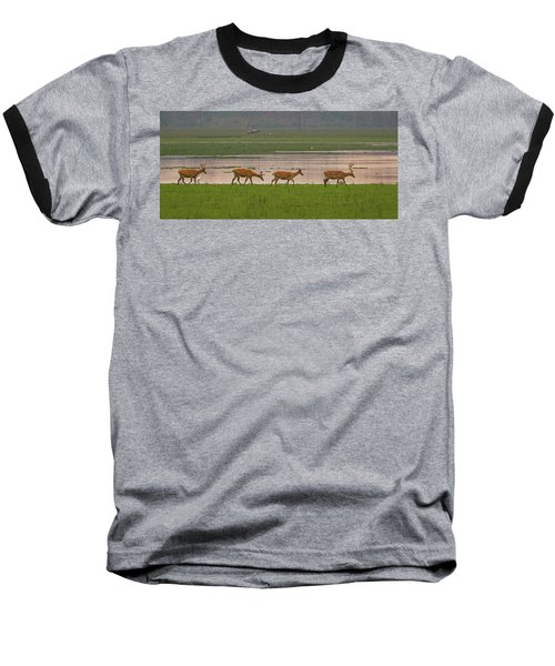Swamp Deers Baseball T-Shirt