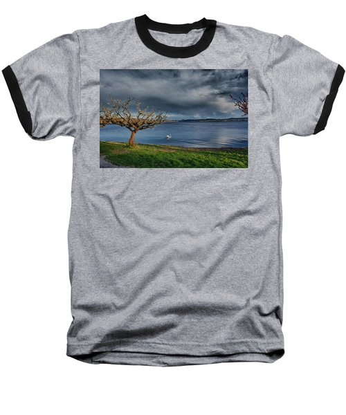 Swan And Tree Baseball T-Shirt