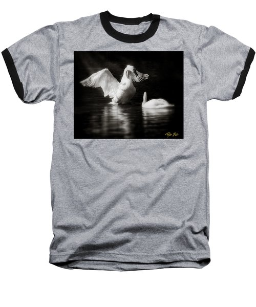 Swan Display Baseball T-Shirt