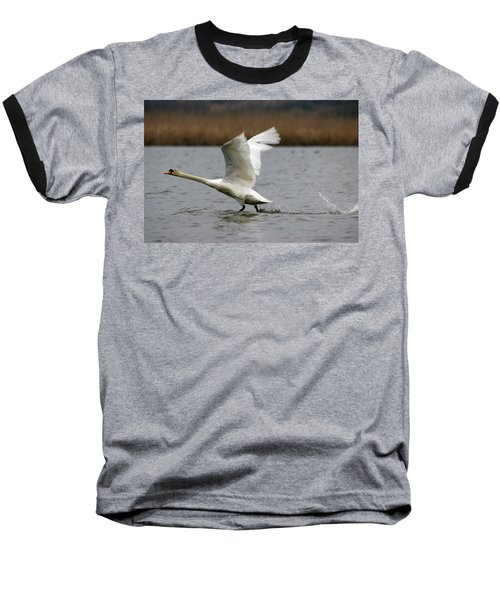 Swan During Take Off Baseball T-Shirt