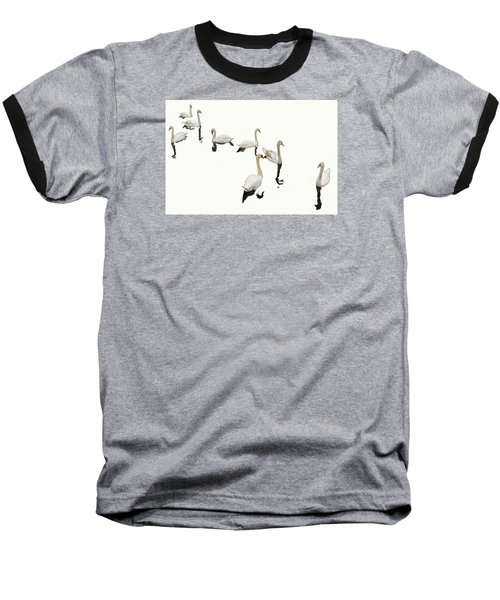 Baseball T-Shirt featuring the photograph Swan Family On White by Constantine Gregory