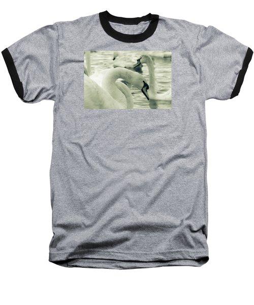 Swan In Water Baseball T-Shirt