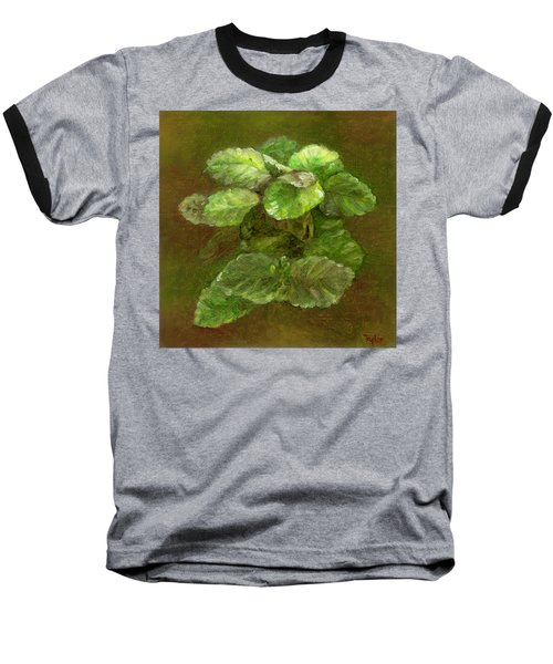 Swedish Ivy Baseball T-Shirt