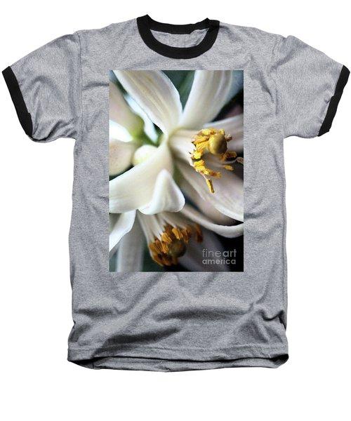 Sweet Fragrance 2 Baseball T-Shirt by Victor K