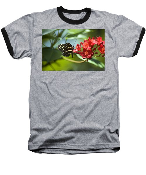 Sweet Nectar Baseball T-Shirt