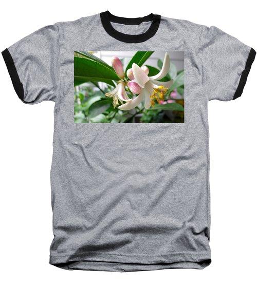 Sweet Nectar Baseball T-Shirt