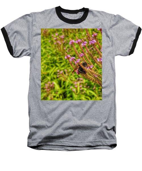 Sweet Senses Baseball T-Shirt