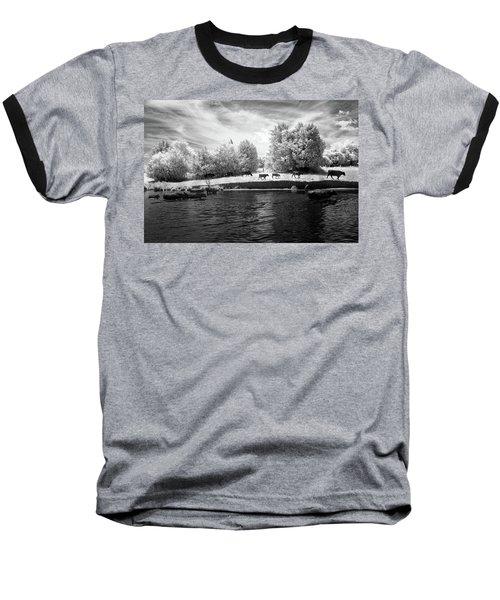 Swimming With Cows Baseball T-Shirt