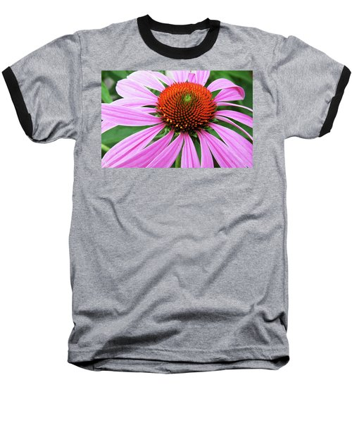 Swirling Purple Cone Flower 3576 H_2 Baseball T-Shirt