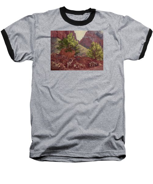 Switchback Stop For Wildlife Baseball T-Shirt by Jane Thorpe