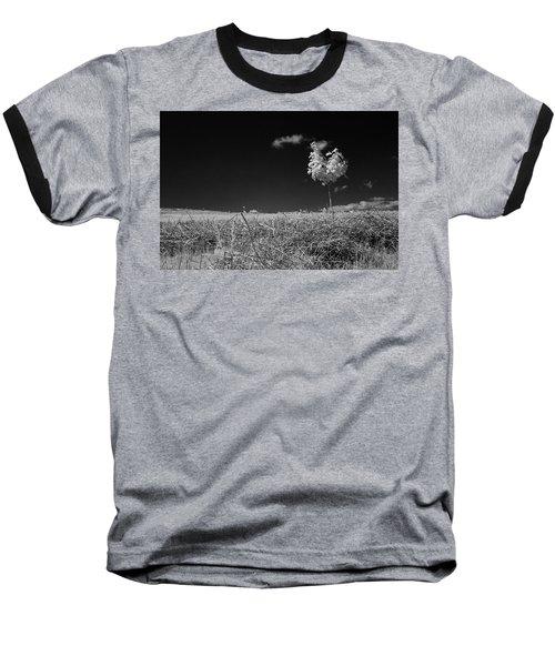 Sycamore Baseball T-Shirt by Keith Elliott