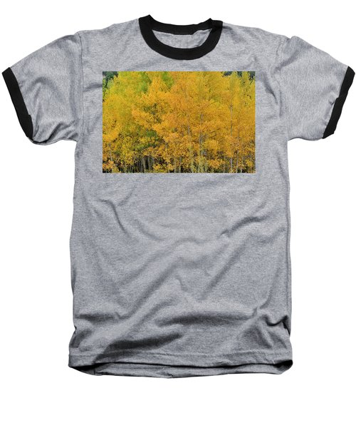 Baseball T-Shirt featuring the photograph Symphony In Gold by Ron Cline