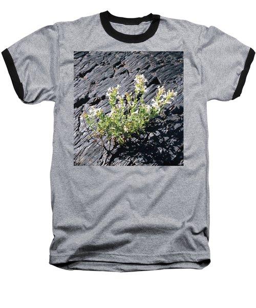 T-107709 Hot Rock Penstemon Baseball T-Shirt