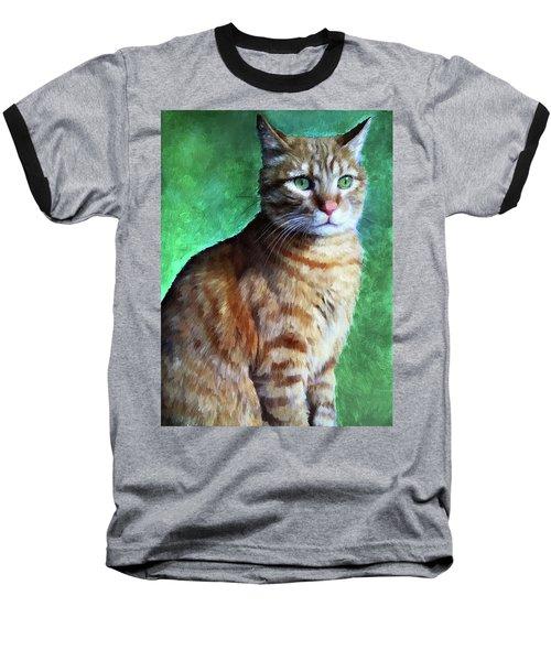 Tabby Cat Baseball T-Shirt