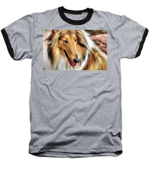 Taffy Collie Baseball T-Shirt