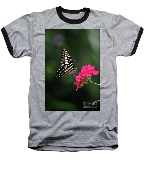 Tailed Jay Butterfly -graphium Agamemnon- On Pink Flower Baseball T-Shirt