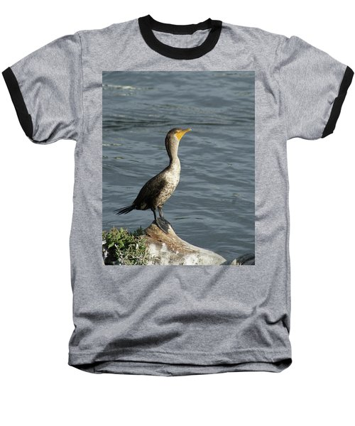 Take My Picture - Cormorant Baseball T-Shirt by Margie Avellino