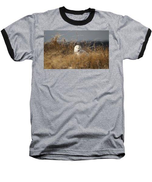 Taking In The Winter Sun Baseball T-Shirt