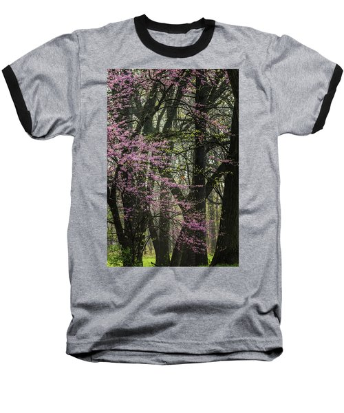 Tall Red Buds In Spring Baseball T-Shirt by Joni Eskridge