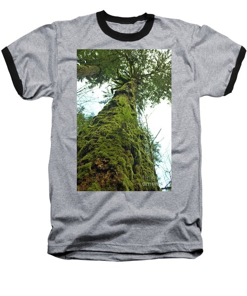 Tall Tall Tree Baseball T-Shirt