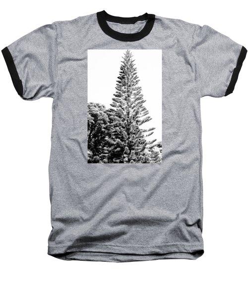 Baseball T-Shirt featuring the photograph Tall Tree Bw - Lan11 by G L Sarti
