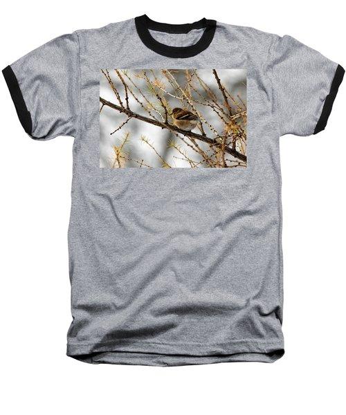 Tamarack Visitor Baseball T-Shirt by Debbie Oppermann