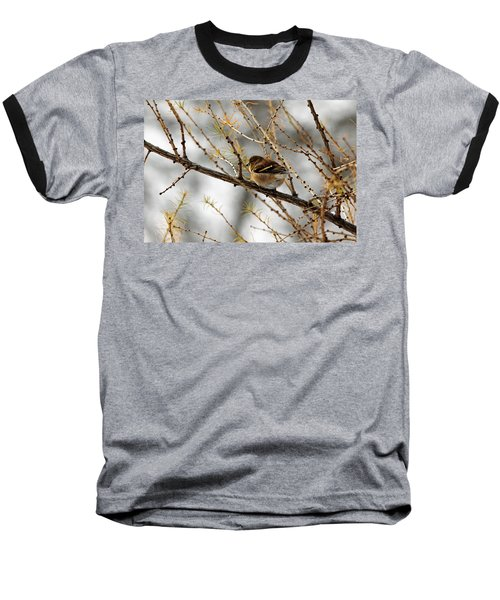 Tamarack Visitor Baseball T-Shirt