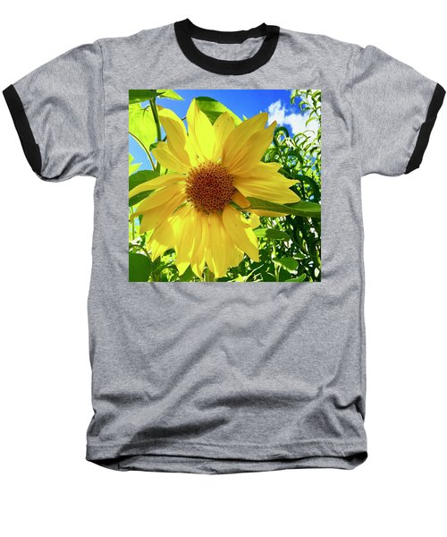 Tangled Sunflower Baseball T-Shirt
