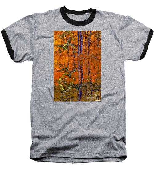Tapestry Baseball T-Shirt by Steve Warnstaff