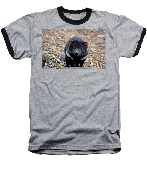 Tasmanian Devil Baseball T-Shirt
